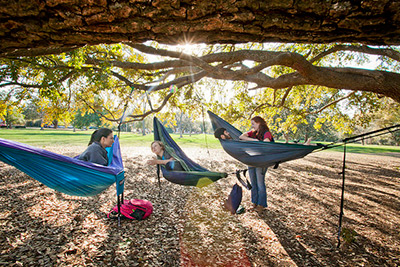 Three students lying in hammocks under a large pecan tree and one student standing next to the student on the far right. The sun is streaming through the branches of the tree towards the camera.
