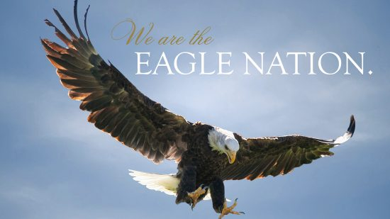 download a zoom background of an eagle with the words We are the eagle nation