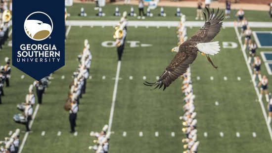 download a zoom background of an eagle flying over a football field